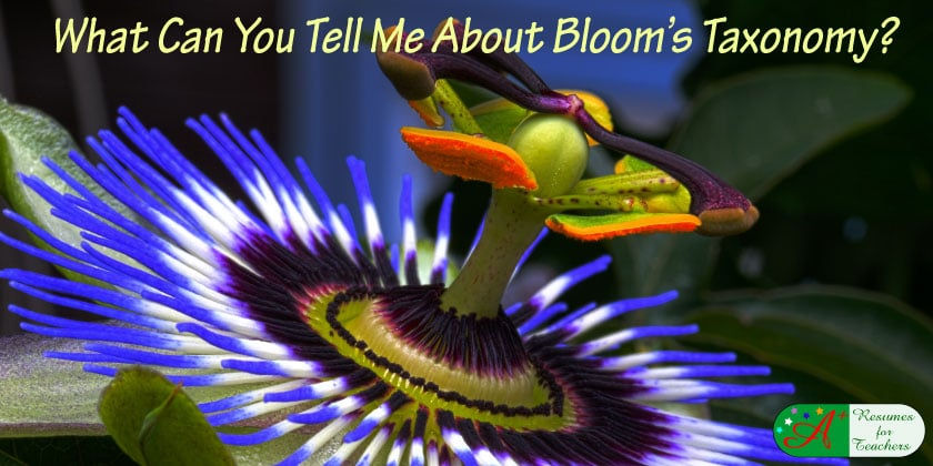 what can you tell me about bloom's taxonomy?