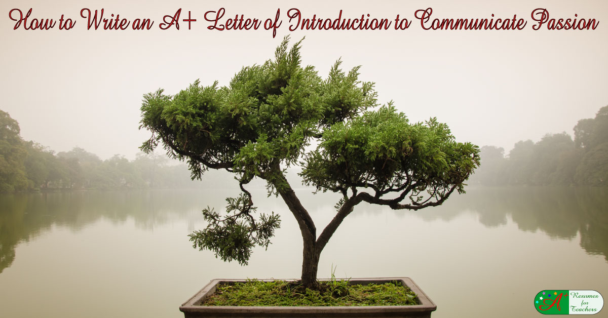 How To Write An A Letter Of Introduction To Communicate Passion