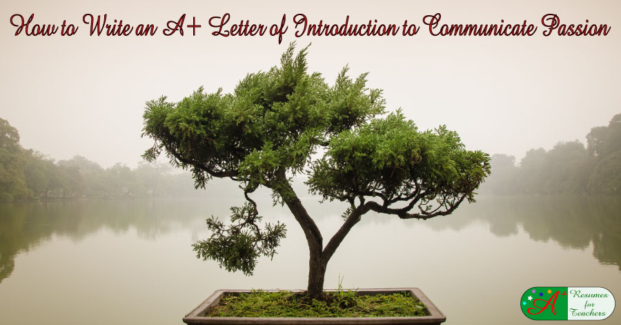 write a letter of introduction to communicate passion